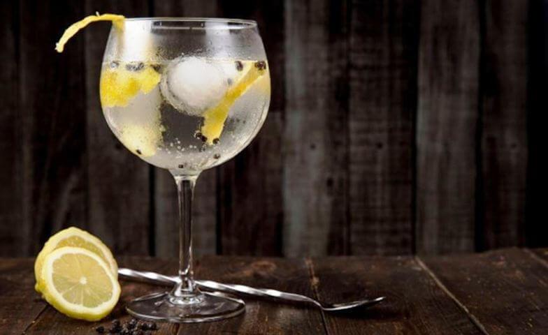 Un gin tonic perfecto