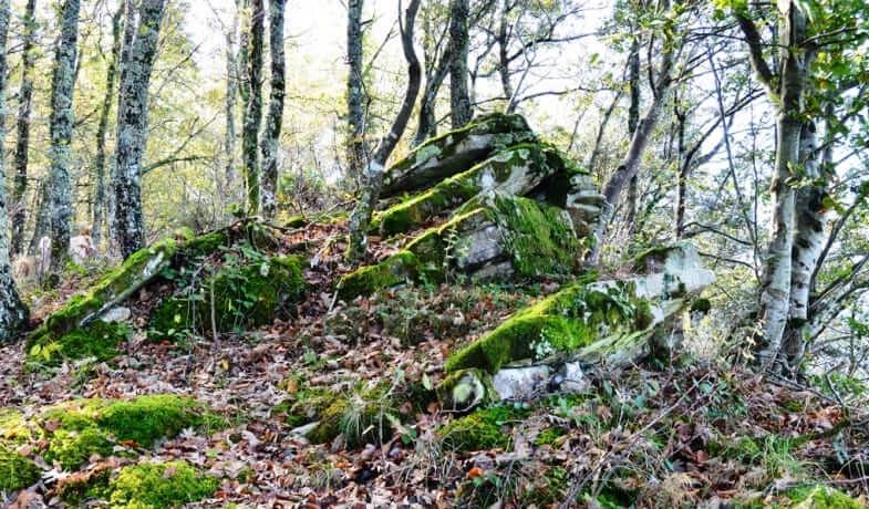 Experiencia ecológica en el País Vasco